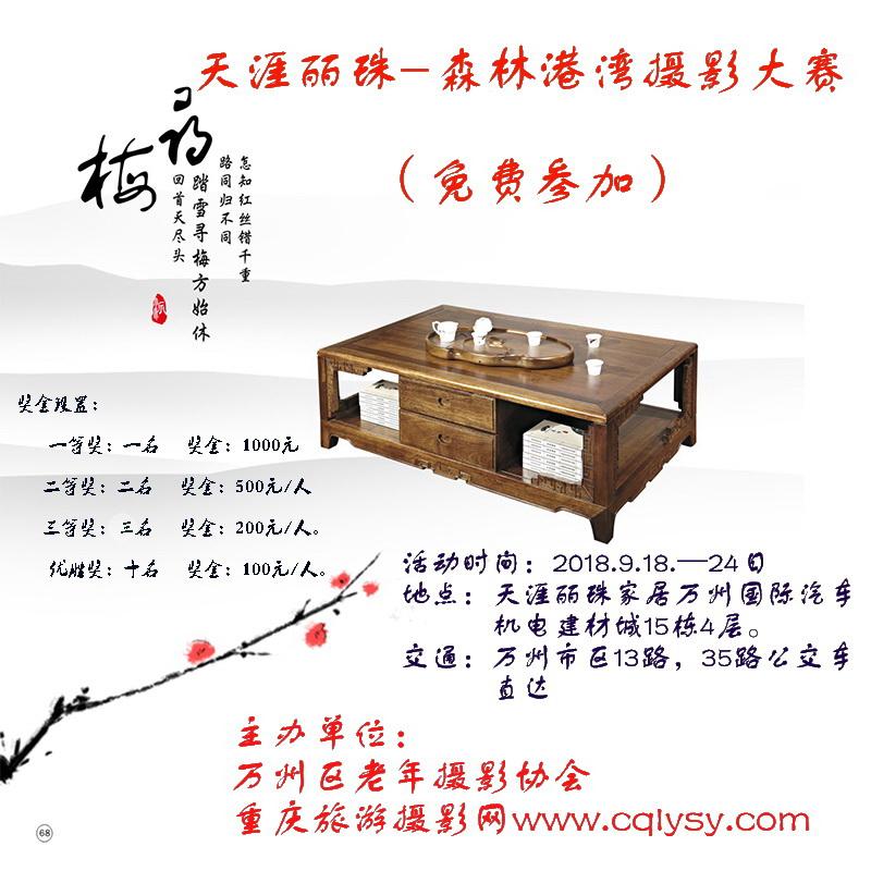 天涯丽珠-森林港湾摄影大赛(免费参加)
