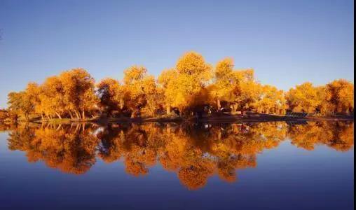 2019内蒙额济纳旗、巴丹吉林沙漠、居延海、张掖九日专业摄影创作行程
