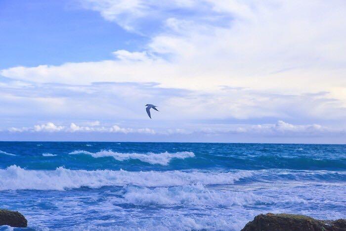 斯里兰卡海岸风情